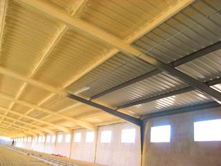 Aislamiento De Poliuretano Para Steel Framing Proyectado