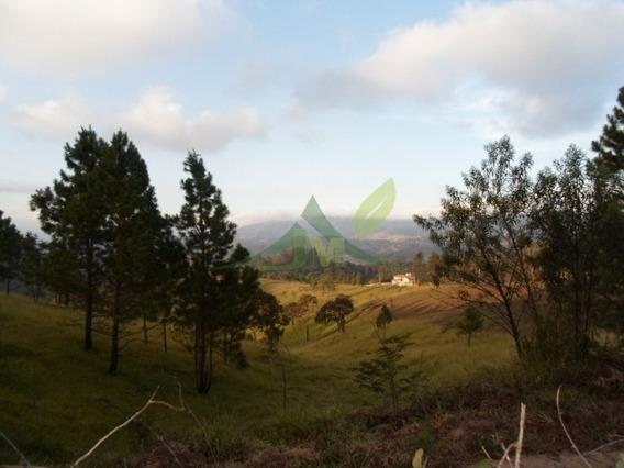 Terreno Em Atibaia Loteamento De Chácaras 3600 M² - 484