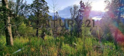 Imagen 1 de 12 de Lote En Venta Bariloche - Villa Lago Gutiérrez Id: 3150