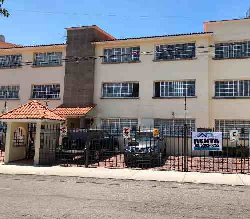 Renta De Departamento En Planta Baja En San Lucas