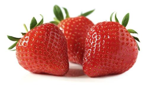 Semillas Frutilla Huerta Fruta Sin Agroquimicos 100% Natural