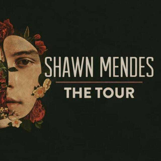 Ingresso Show Shawn Mendes 29/11 Setor Azul