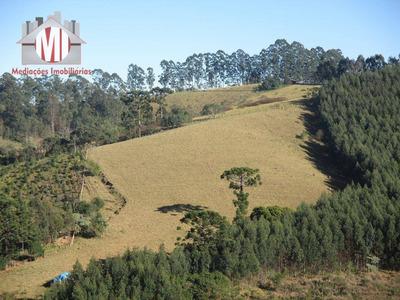 Sítio Rural À Venda, Zona Rural, Pinhalzinho. - Si0007