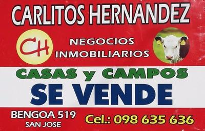 Su Campo En Uruguay