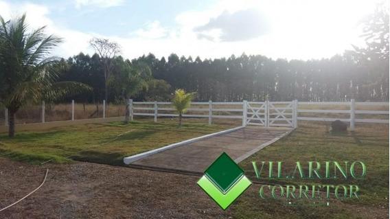Fazenda Completa Em Felixlândia - 2419