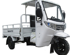 Motocarro A Gasolina 200cc Tipo Pick Up Versión Xl Muevetec