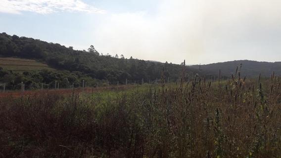 Terreno Em Paruru, Ibiúna/sp De 0m² À Venda Por R$ 47.000,00 - Te312879