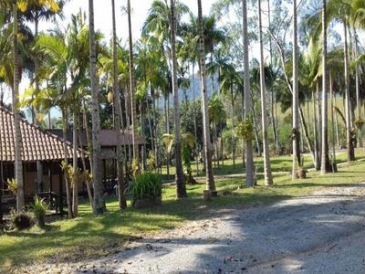 Sítio Em Camboriú-sc 5 Km Do Centro ( 3,5 Hectares E Meia ) Permuta Por Apartamento Em Balneário Camboriú - T171 - 4947083
