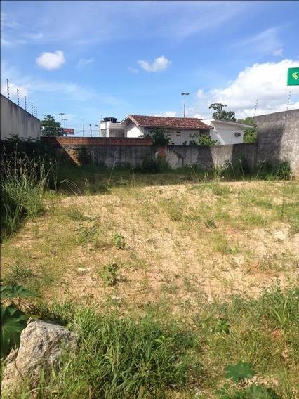 Terreno Em Capoeiras, Florianópolis/sc De 0m² À Venda Por R$ 550.000,00 - Te196837