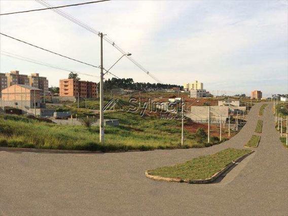 Terreno, Nova Carmela, Guarulhos - V382