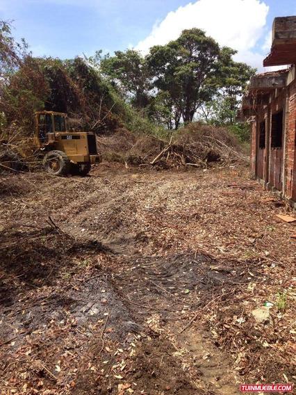 Terrenos En Venta Cód. Alianza 26-003
