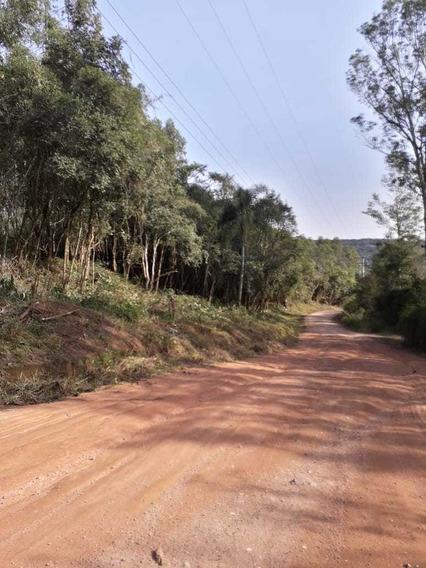 Área Rural Com Córrego Opcional
