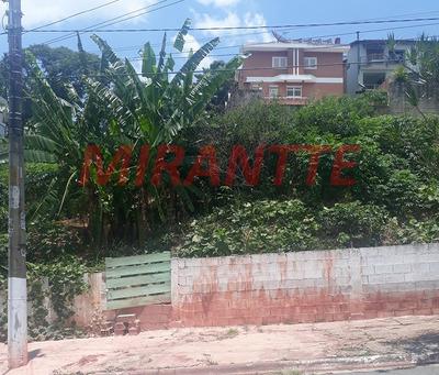 Terreno Em City América - São Paulo, Sp - 283631