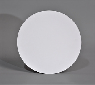 Disco Plastificado Ppm Blanco Mate D. 25,5 Cm (x200u) - 141
