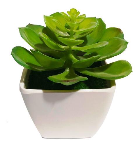 Imagen 1 de 3 de Cactus Maceta Planta Artificial 12 Cm Decoración Sheshu Home