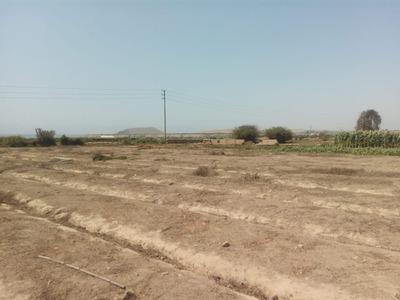 Ocasión!! :: Remato Terreno De 2,000 Mt2 En Hualmay (huacho)