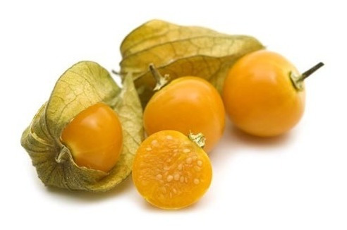 Hosuky Physalis 100 Sementes-fruta Rara-frete Gratis