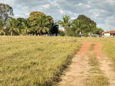 Fazenda A Venda Em Anastácio Ms (pecuária) - 746