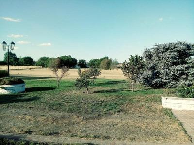 Quinta - Capital