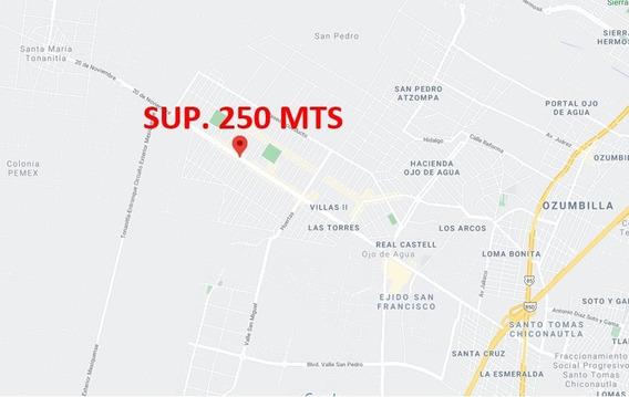 Terreno Ojo De Agua Temacac Edo Mex Sup. 250 Mts