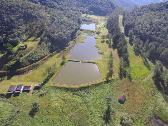 Fazenda Rica Em Água.