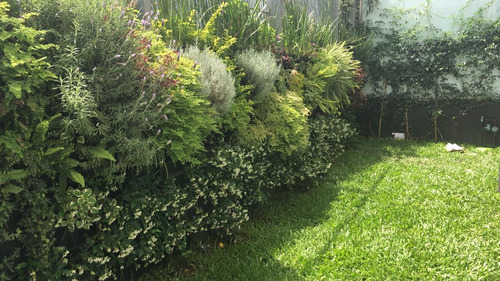 Imagen 1 de 5 de Jardines Verticales, Mantenimiento Y Diseño