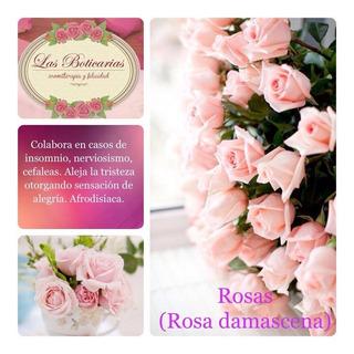 Aceite Esencial Absoluto Puro De Rosa Las Boticarias X 5 Ml