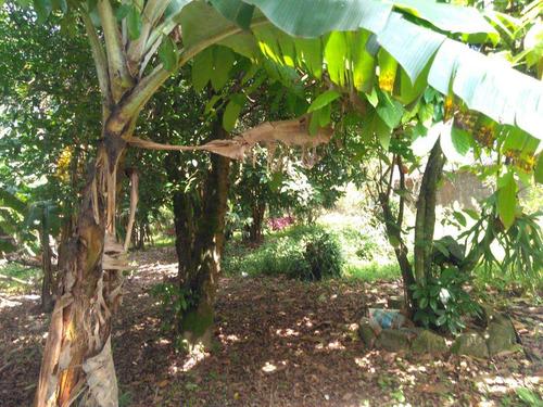 Imagem 1 de 3 de Terreno, Parque Bitaru, São Vicente - R$ 1.200.000,00, M² - Cod - V727