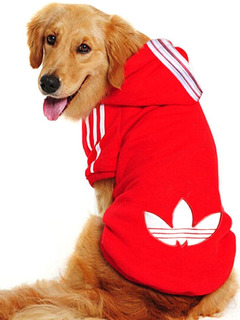 Buzo Abrigo Perro . Deportivos. Talles Grandes