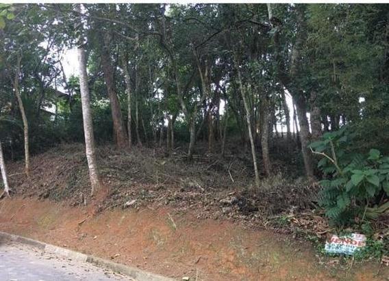 Terreno Em Granja Viana, Cotia/sp De 0m² À Venda Por R$ 250.000,00 - Te318695