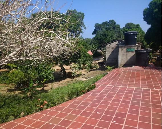 Finca En Venta, Santa Catalina, Bolivar