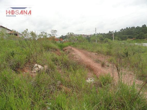 Terreno Residencial À Venda, Jardim Santo Antonio, Franco Da Rocha. - Te0105