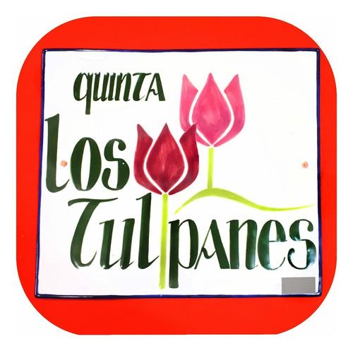 Imagen 1 de 1 de Placa Rectangular Personalizada De Talavera Poblana Plc