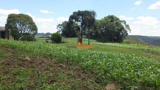 Terreno - Rural - 1247