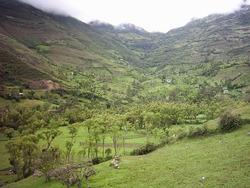 Tierra De Cultivo Tacabamba-chota-cajamarca