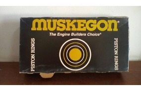 Muskegon PS1444 020 Piston Ring set fit Ford 200 250 6 Cyl
