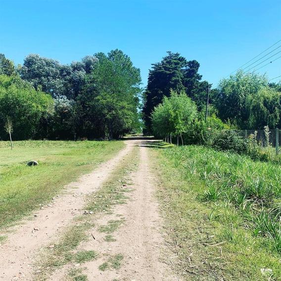Campo En El Candil