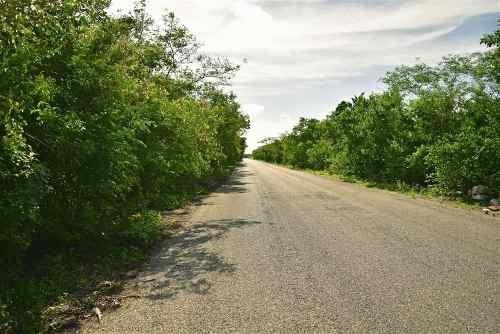 Terrenos A 700 M De Carretera A Progreso