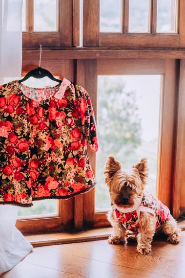 Vestido Infantil Floral , Estampa Roupa Pet Brinde