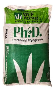 Rye Grass Perene Phd 2 Kg - Pasto Para Jardineria Invierno - Dlf Seeds & Science