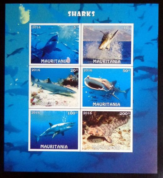 Mauritania Fauna, Bloque 6 Sellos Tiburones 2016 Mint L9887