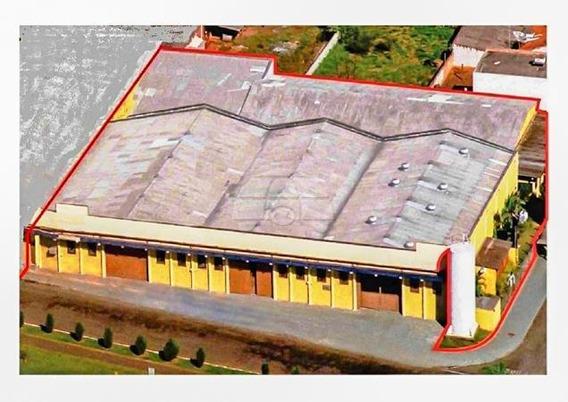Barracão - Comercial - 151195