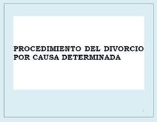 Necesitas Un Abogado De Divorcio En La República Dominicana?