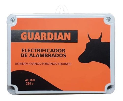 Electrificador - Pastor - 40 Km - 220 V 2 Años De Garantia