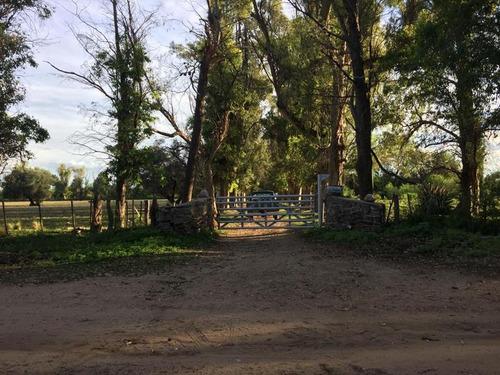 Campo - San Javier