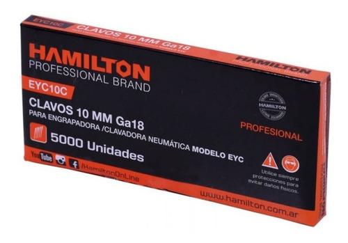 Clavos Engrapadora Clavadora  Hamilton 5000  2 X 10 Mm