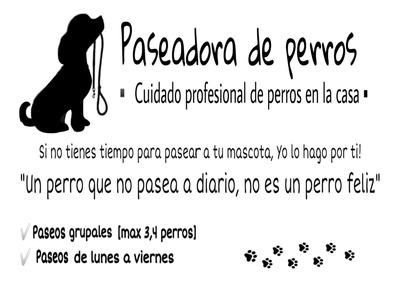 Cuidado Y Paseadora De Perros