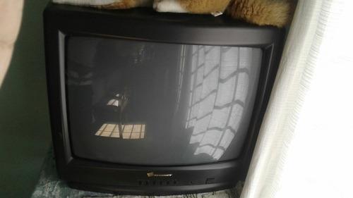Televisor Regency 21  - Exelente !!!