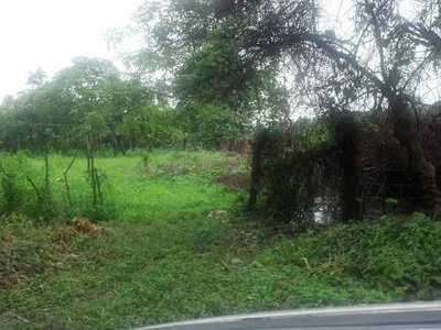 Terreno Comercial En Venta Buena Vista Rio Nuevo 2da Secc