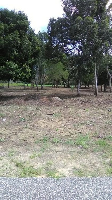 Citymax Platinum Vende Terreno Vacacional En Juan Dolio